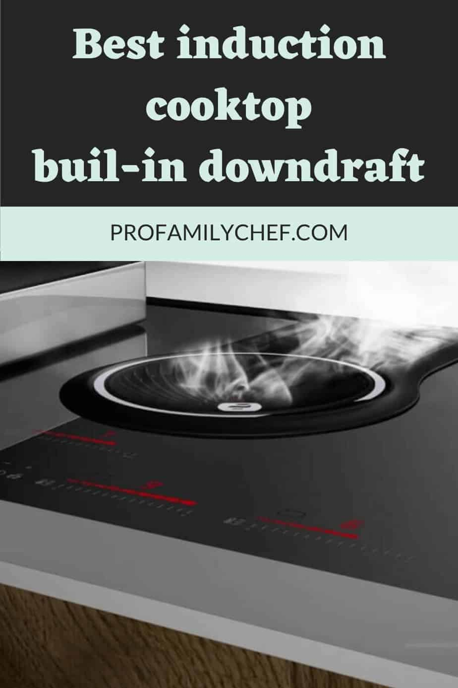 best induction cooktop or hob with built-in downdraft