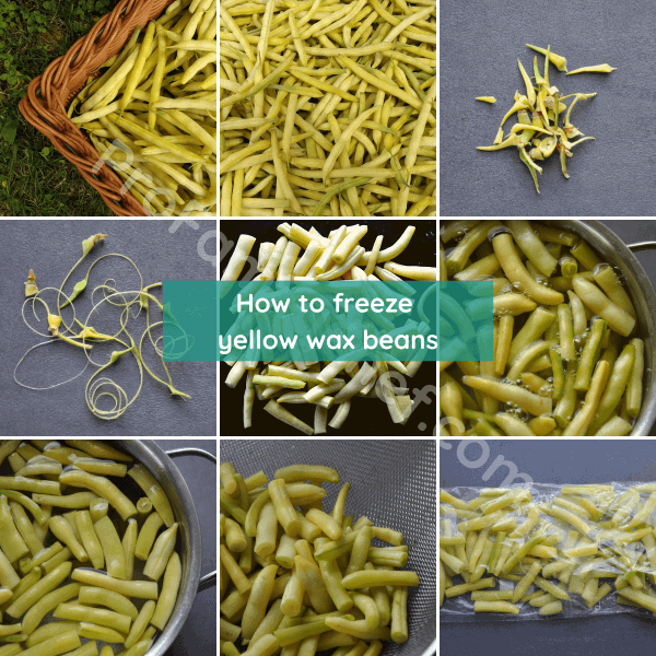 how to freeze yellow wax beans