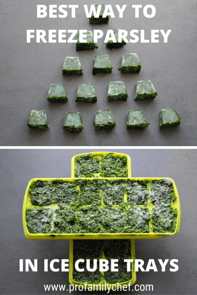 How to freeze parsley in ice cube trays, best way to do it PIN