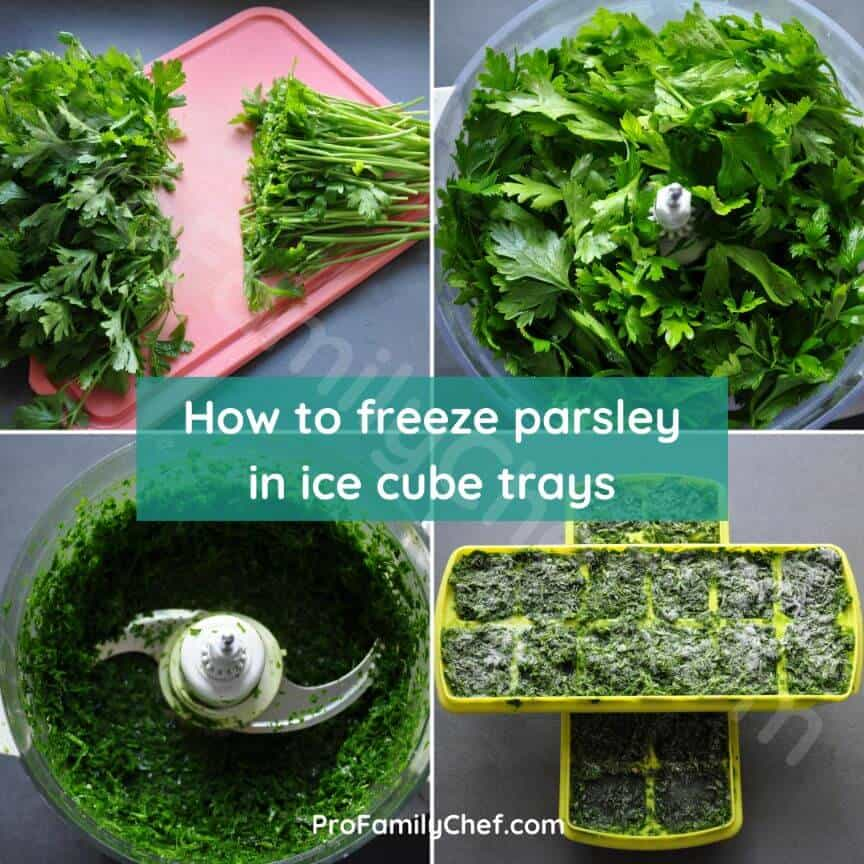 best way to freeze parsley in ice cube trays